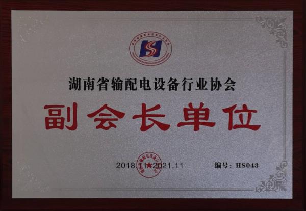 湖南省输配电设备行业协会副会长单位
